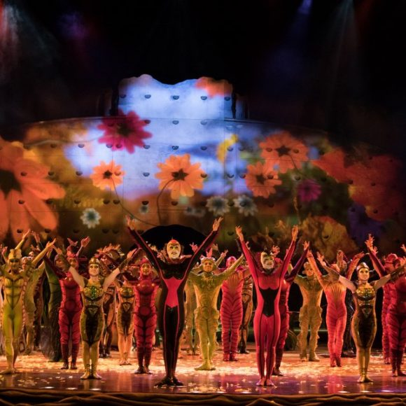 Cirque Du Soleil's OVO Buzz into Miami!